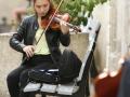 10_violons
